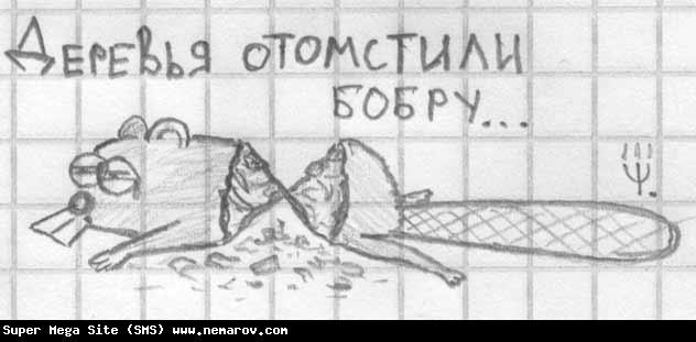 http://nemarov.com/wp-content/uploads/old/20081010-2629.jpg