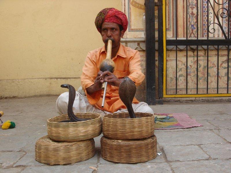 http://nemarov.com/wp-content/uploads/old/20090921-1253430593_32_snake_festival.jpg